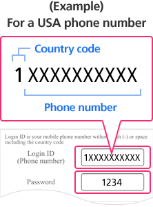 (Example) For a USA phone number